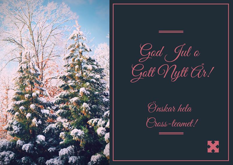 God Jul önskar hela Cross-teamet!